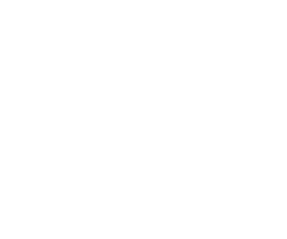 A specialized approach to working with couples